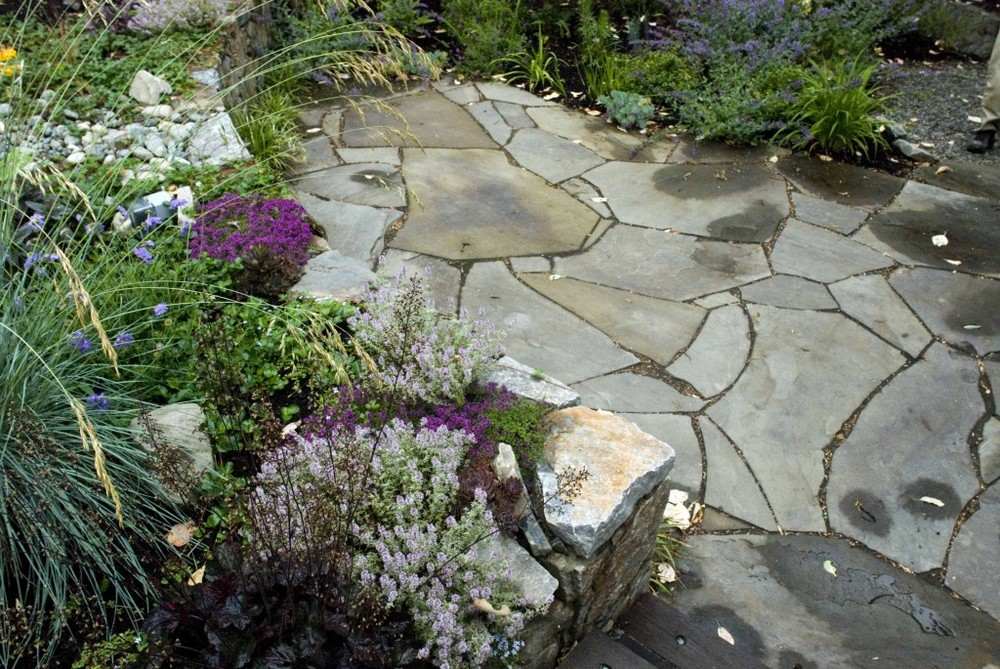 A medly of sages, thyme, lavender and fescue soften the edges of this grey flagstone pation set in gravel for a relaxed look.