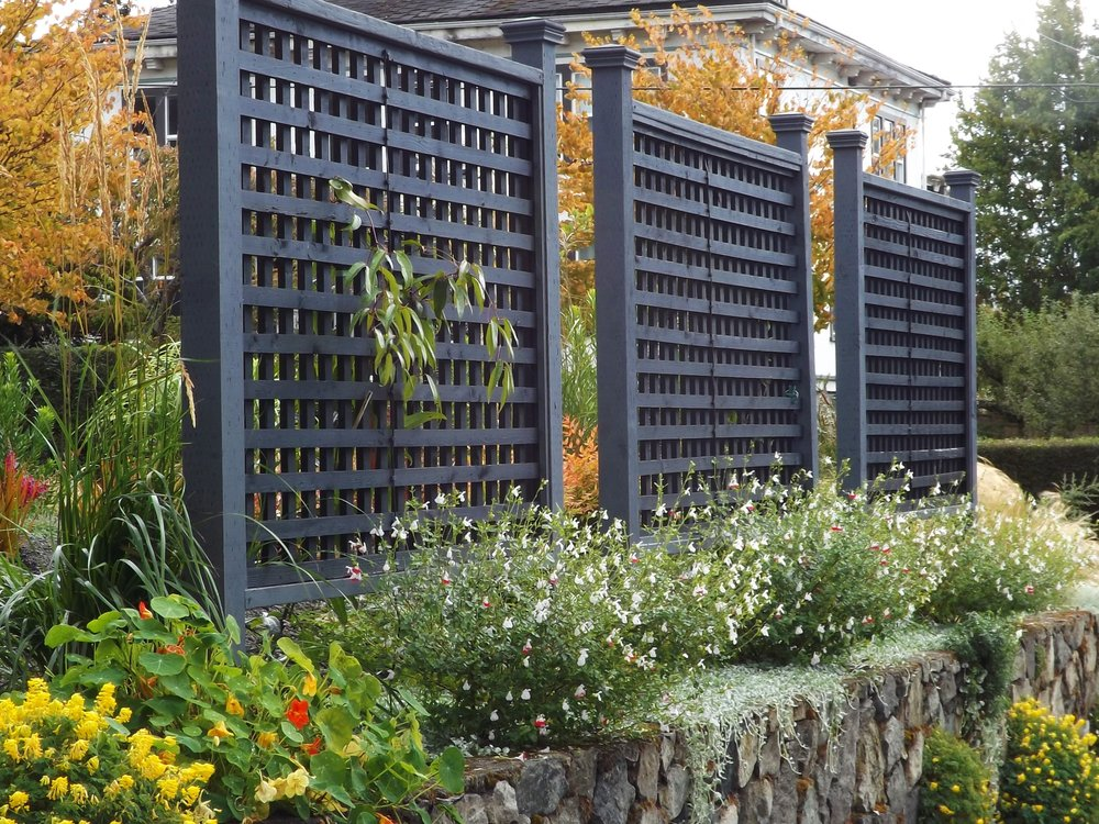 Free standing lattice panels are a great way to block unwanted views without breaking the bank. They look attractive on both sides and can be dressed up with climbing, roses, clematis, honeysuckle or other vines for another layer of screening. These lattice panels are perfectly positioned to screen views of a neighbour's driveway and patio. Nasturtiums, salvia and Dichondra 'Silver Falls' add a festive air.