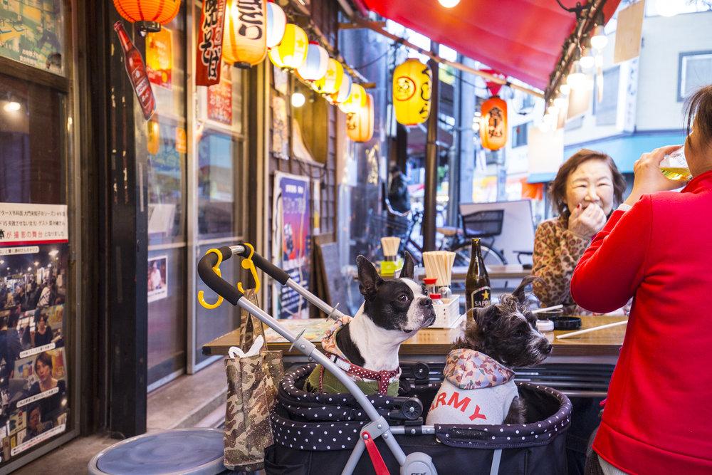 Tokyo2015©LeilaSeppa003_MG_1806.jpg