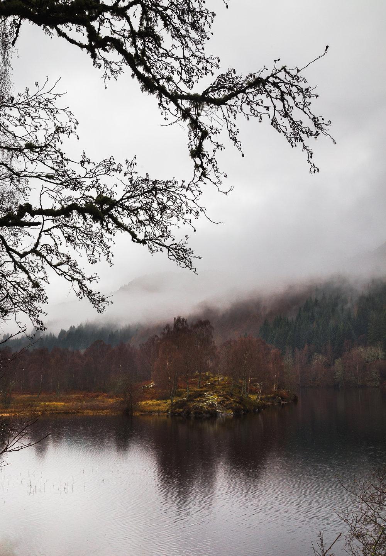 Scotland website-4.jpg