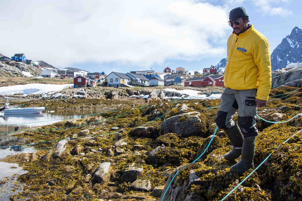 fishing-in-east-greenland-kuummiit.jpg