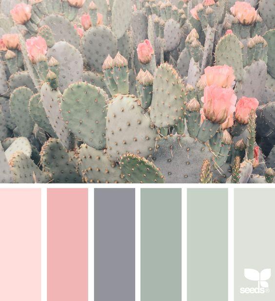 Color-Scheme-04