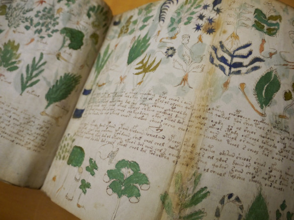 Voynich manuscript (photo: Emily Nachison)