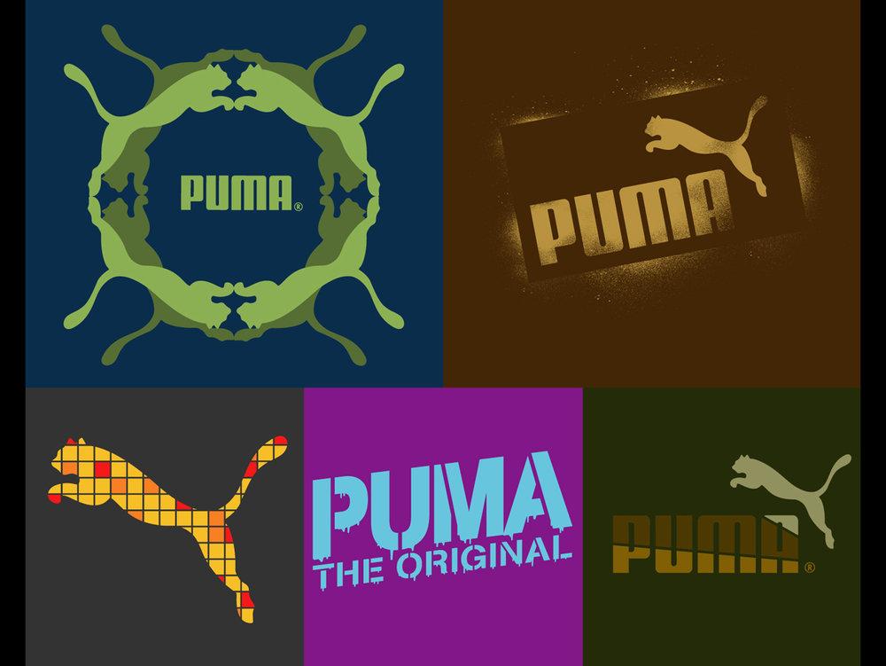 puma1.jpg