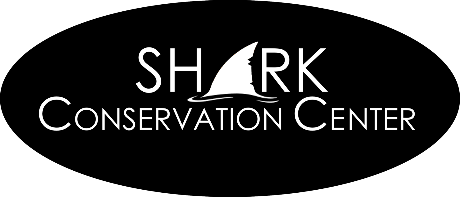Shark Conservation Center