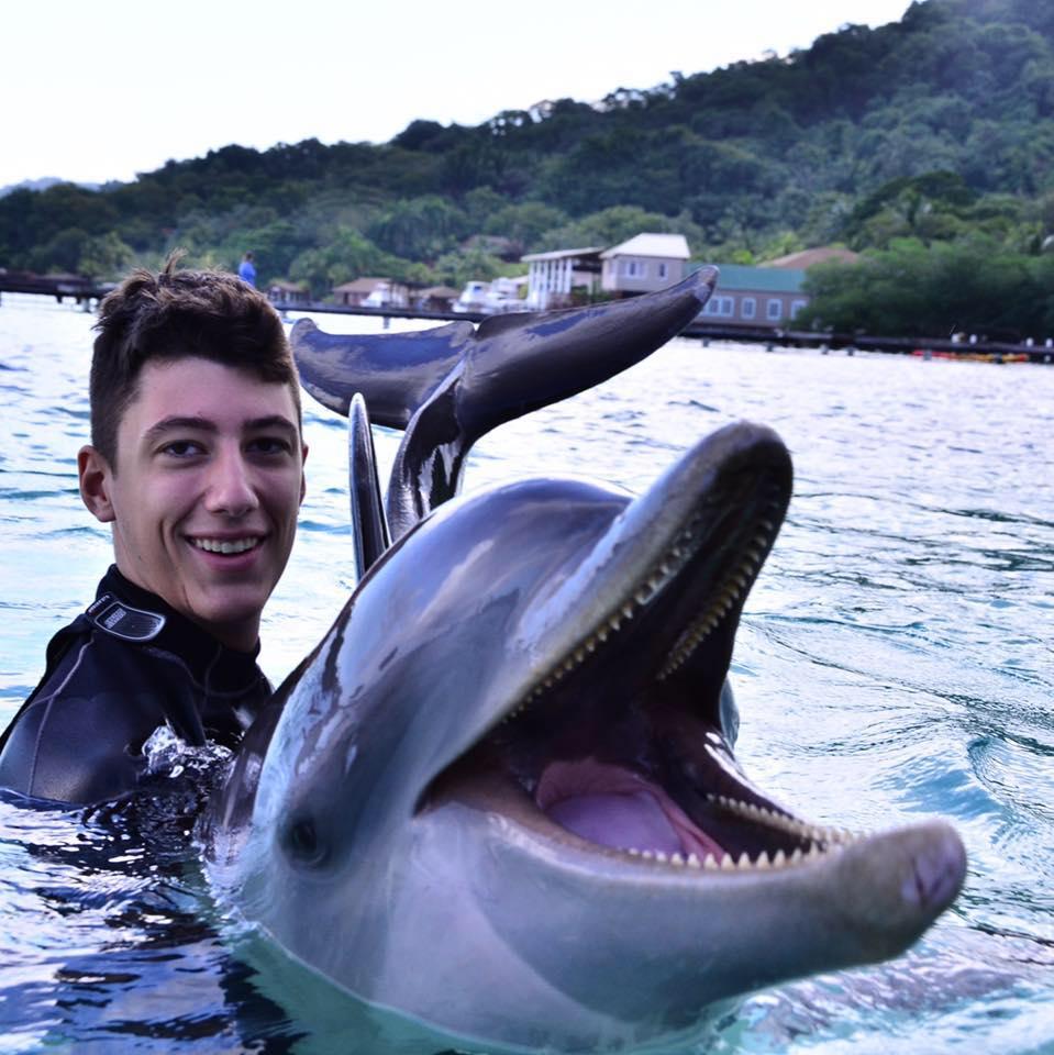 FB dolphin prpic.jpg
