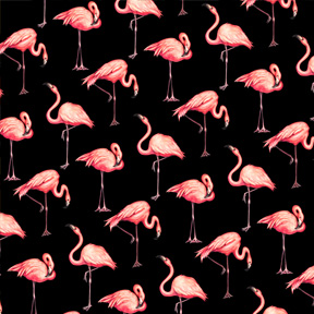 Flamingos - Black