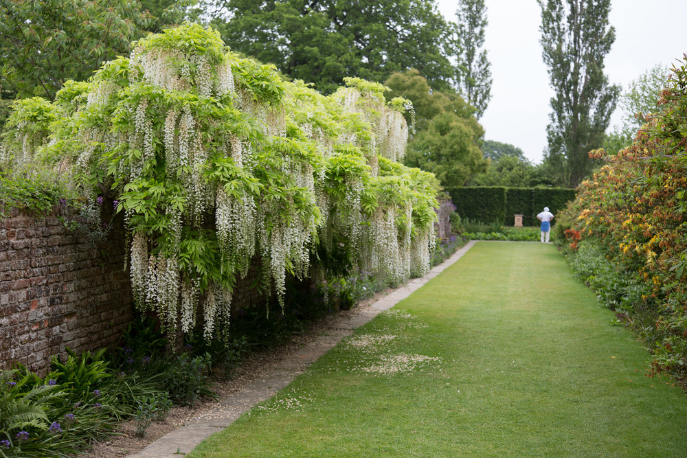 Sissinghurst castels garden Juni 2013