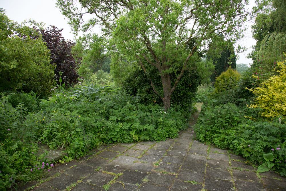 Iden crofts Garten (3010 von 14).jpg