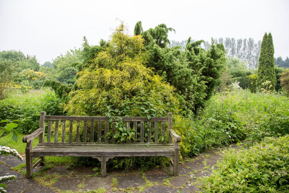 Iden crofts Garten (3013 von 14).jpg