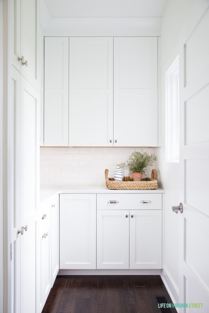 """This shows a pantry full of cupboard doors, no open shelves at all. The homeowner says she has cats and doesn't """"do well"""" with open shelves. 