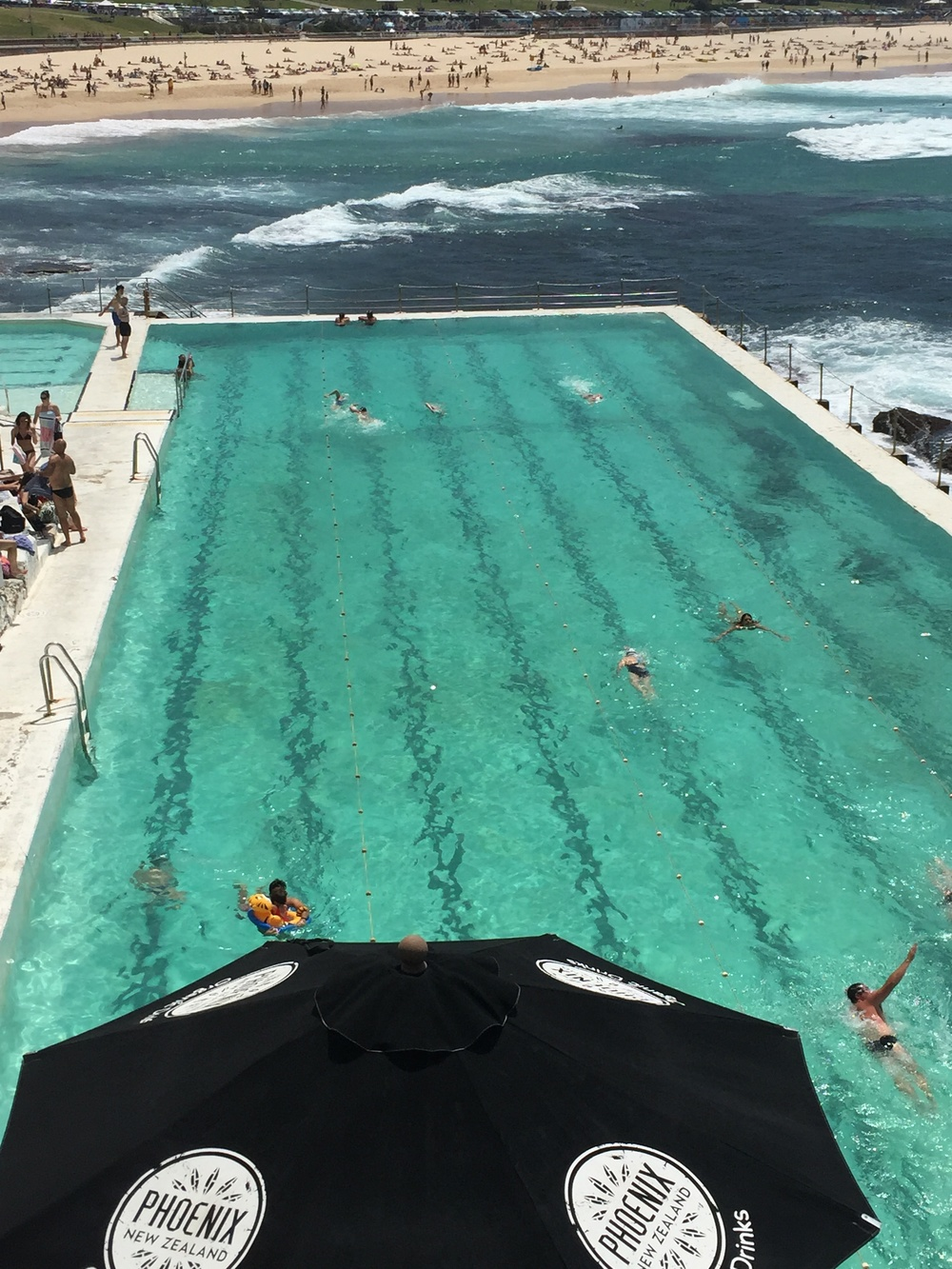 Swimming in Bondi Icebergs pool before going to work