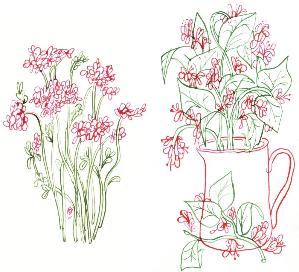 flowersbehance2.jpg