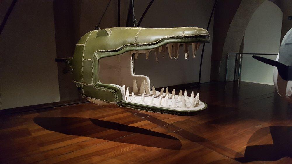 Eugenie Crocodylus