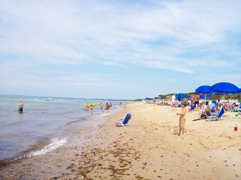 Beautiful beach on the cape cod bay