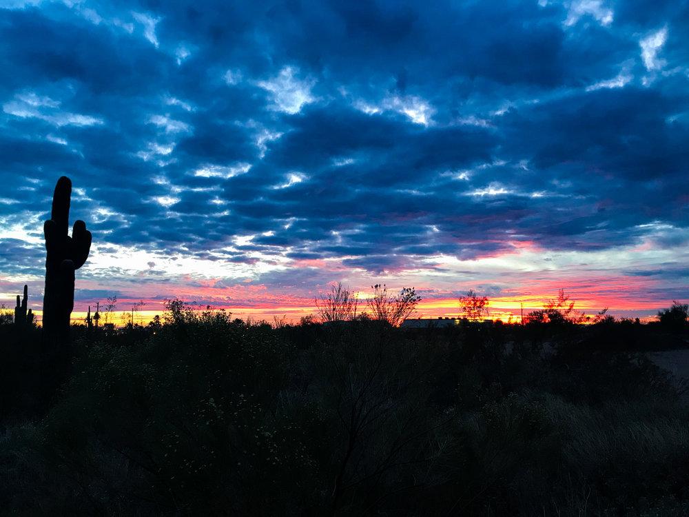 Desert Sunset Apache Junction Arizona Cactus