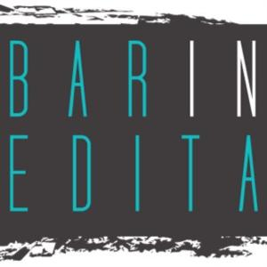 Barinedita.it logo
