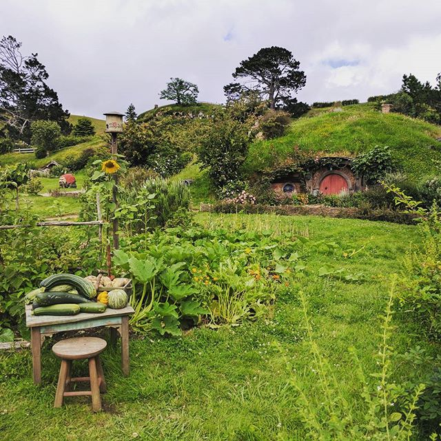 #lordoftherings #Hobbiton #hobbit