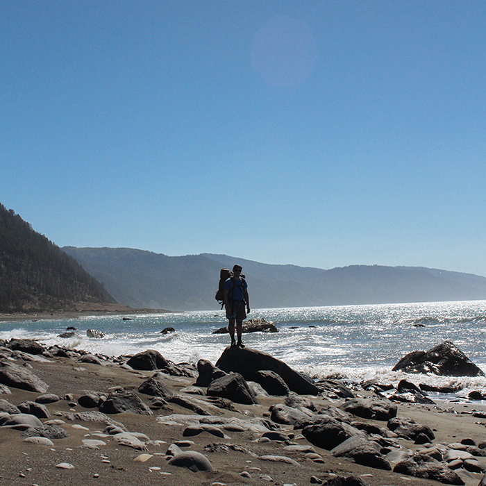 Low tide   — Lost Coast Trail