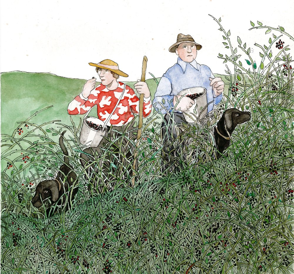 Picking Blackberries - Local Artist Anne Burgess highlights some of the wonderful activities that can take place on a Greenway!