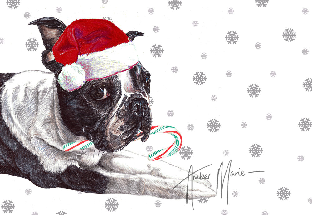 Single Large Luxury Boston Terrier Christmas Card (CC) — Two Woofs