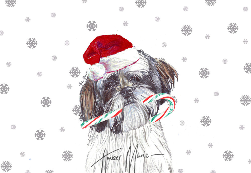 Single Large Luxury Shih Tzu Christmas Card (CC) — Two Woofs