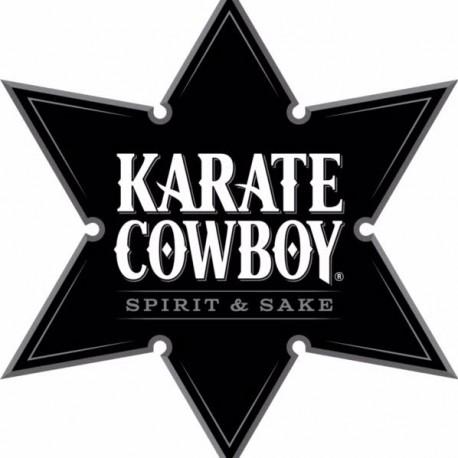 Karate Cowboy