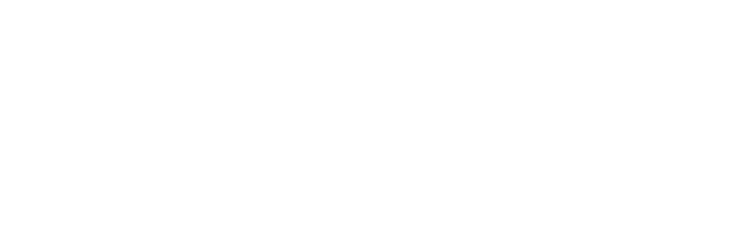 Sirenia Custom Guitars