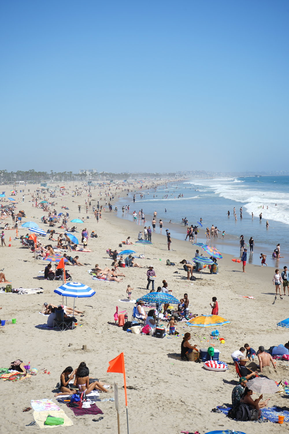 santa monica food allergy travel