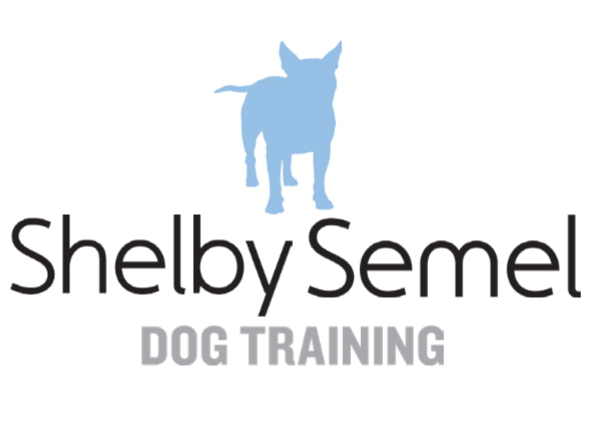 Shelby Semel Dog Training