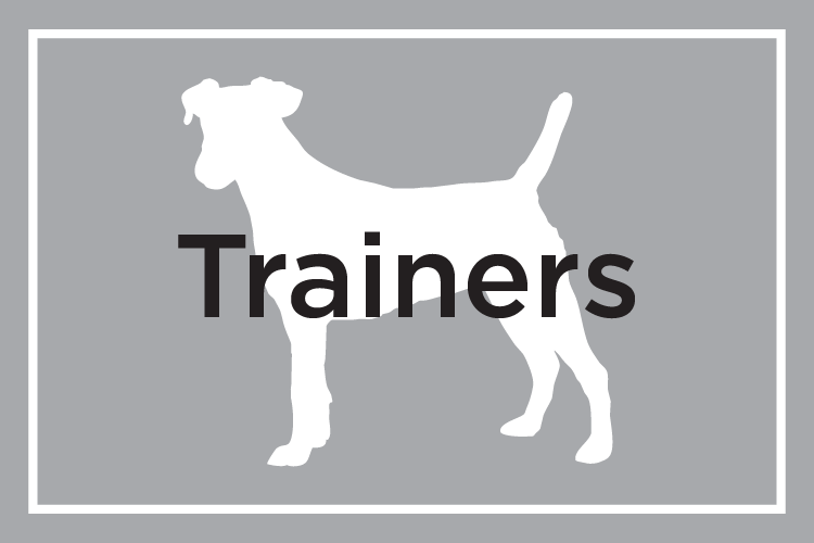 Shelby Semel Dog Training :: Trainers