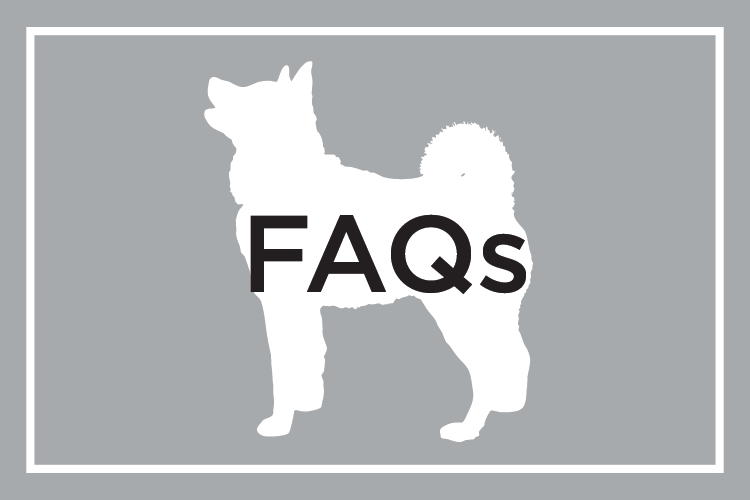 Shelby Semel Dog Training :: FAQs