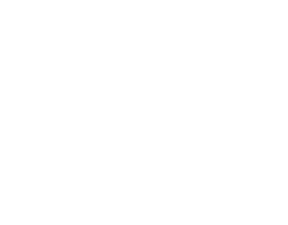 Website Quotes.png