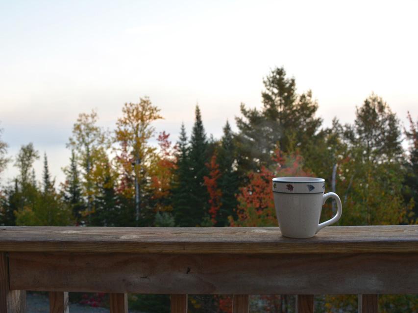 su-deck-mug-cropped.jpg