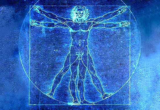 Nuestros cuerpos y mentes están interconectados gracias a nuestro sistema nervioso, por eso es que cada reacción en el organismo repercute en todo el sistema y no se considera un evento aislado.