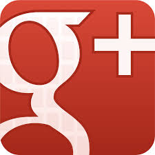 Google Plus, Savvy Girl Friday, Social Media, What about google plus?