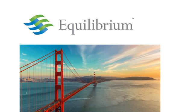 For more information, please refer to   http://eq-cap.com/equilibrium-forum-videos-2016/