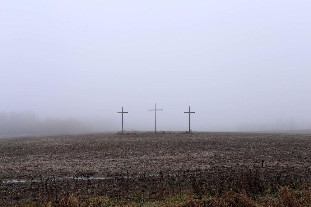 fog8.jpg