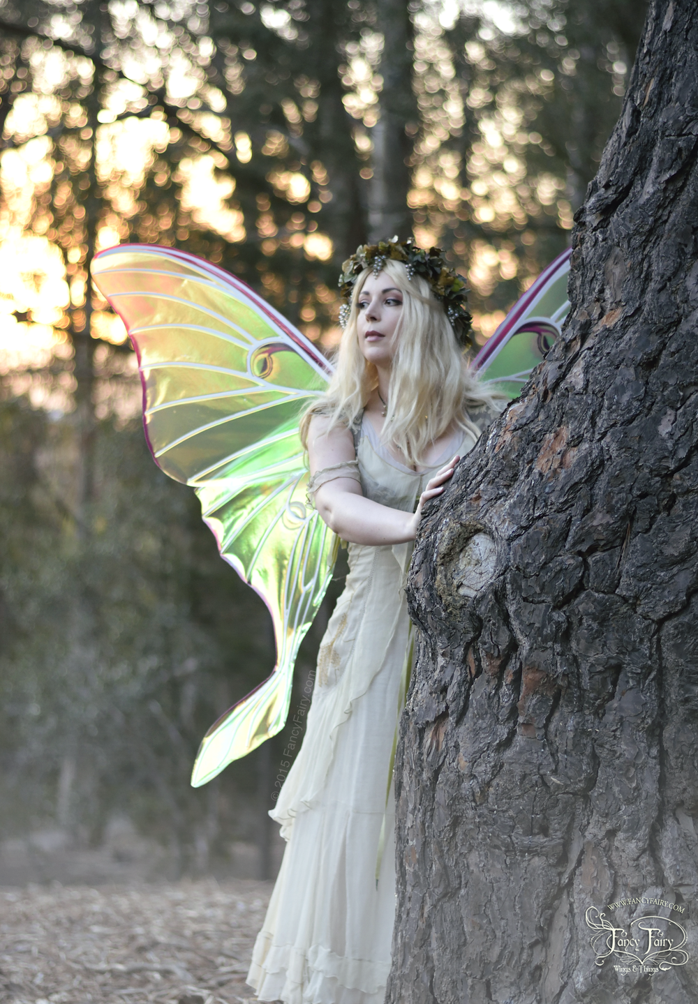Luna Moth Fairy at Sunset
