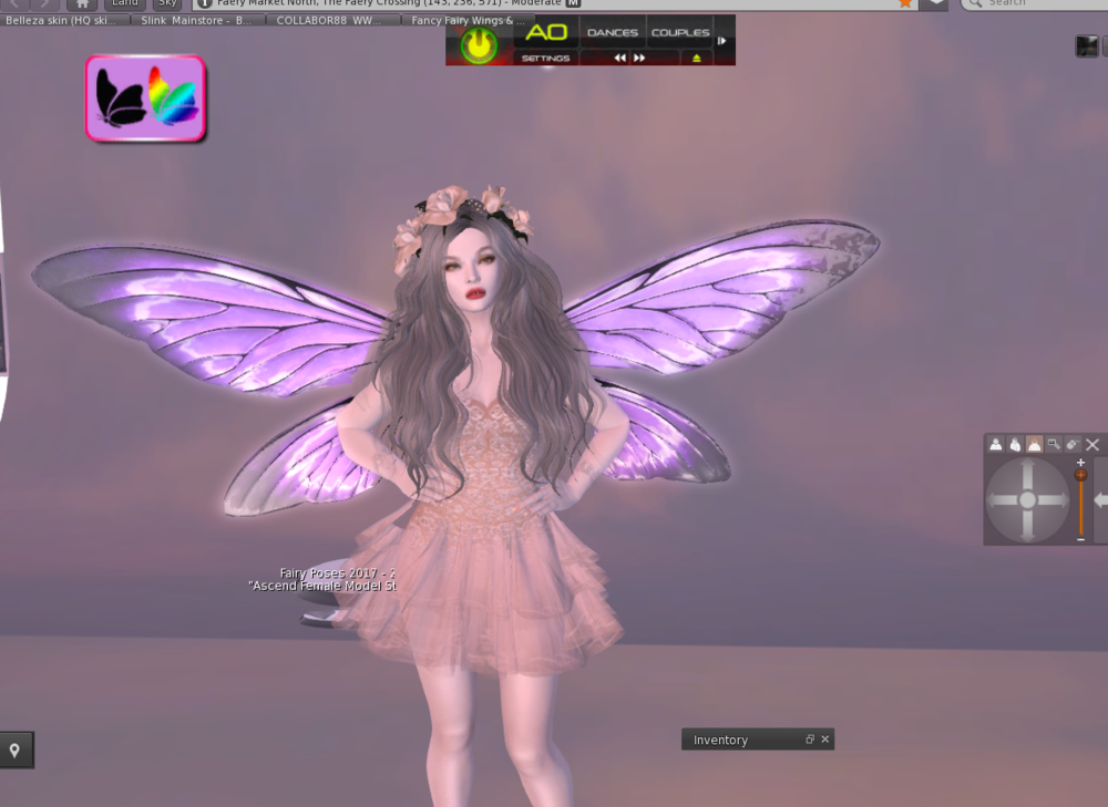 Infringing fairy wings