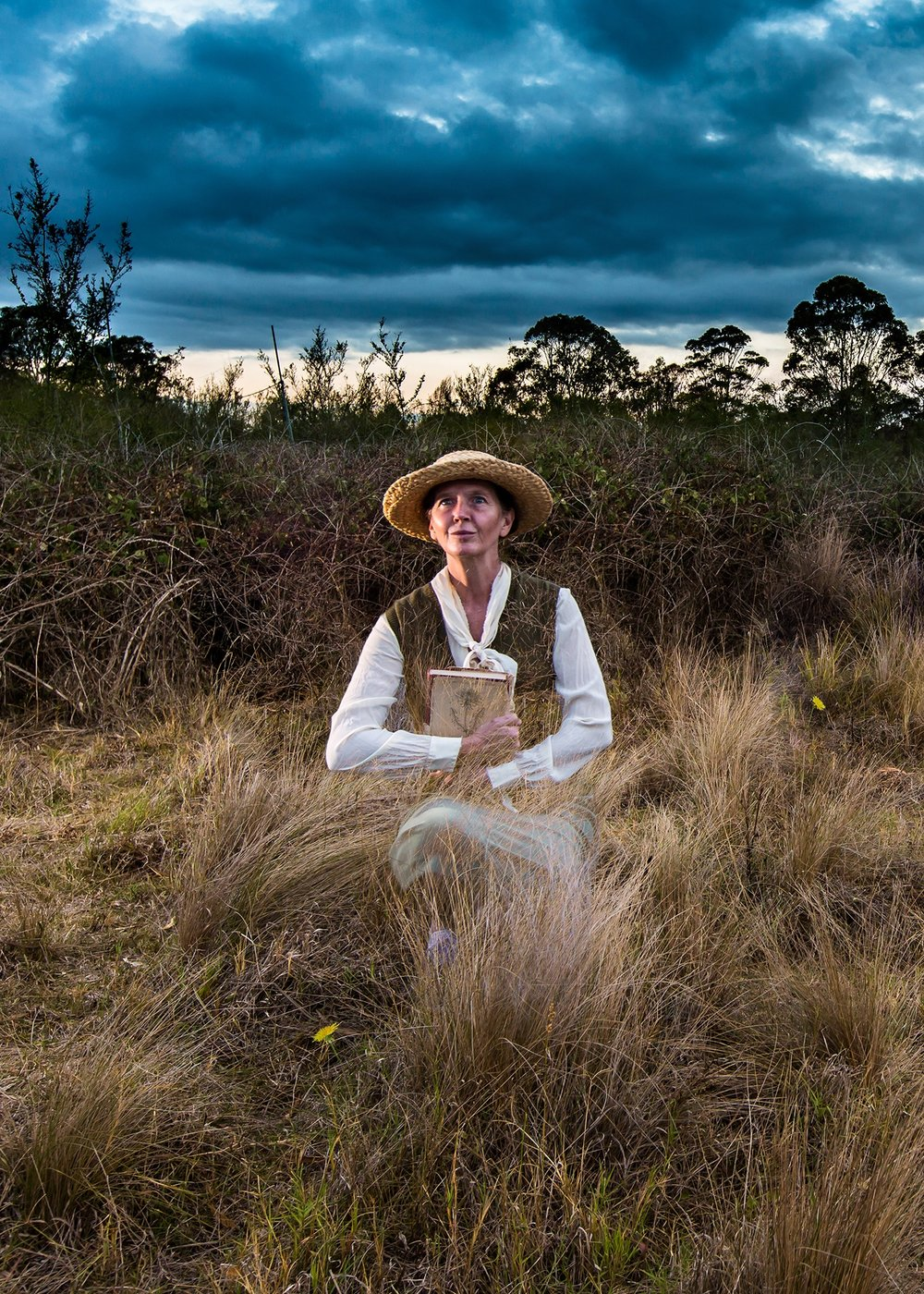 The Natural Conservatorium For Wise Women -