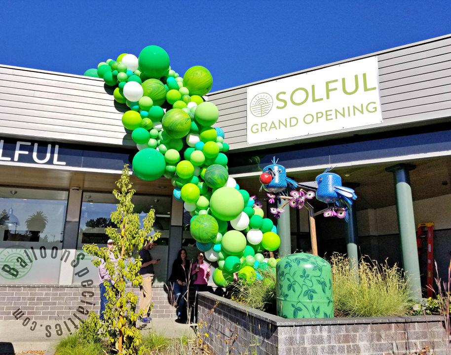 Napa dispensary grand opening storefront balloon garland zim balloons.jpg