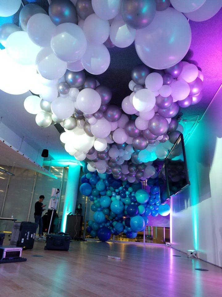 Balloon Garland Cloud Photo Backdrop Zim Balloons.jpg