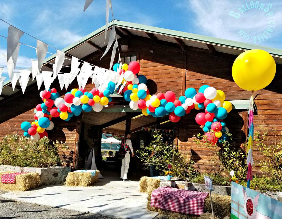 Birthday Party 3FT BalloonTassels Barn latex Garland Zim Balloon Specialties - Sebastopol in Sonoma County_1.jpg