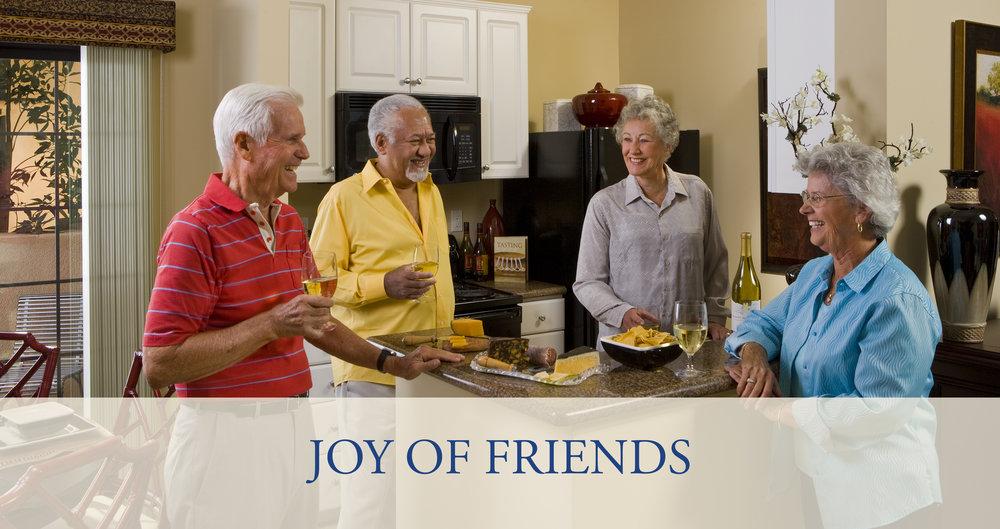 JOY OF FRIENDS2.jpg