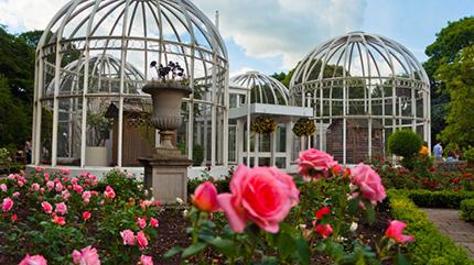 Birmingham Botanical Gardens- EDGE conference 2018