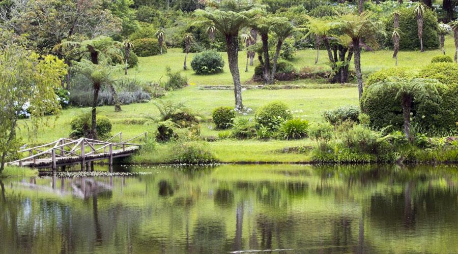 Vumba Botanical Gardens