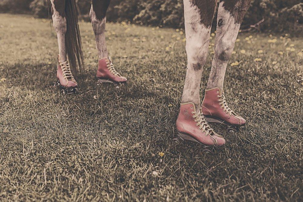 feet-legs-animal-farm (1).jpg
