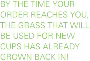 WEBER+grasspapercup.png