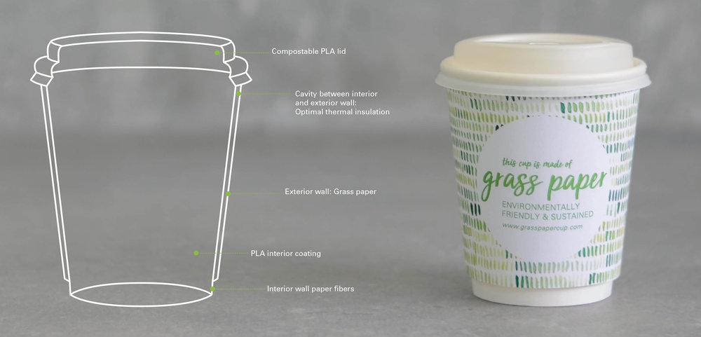 Grafik-Graspapercup-Webseite.jpg
